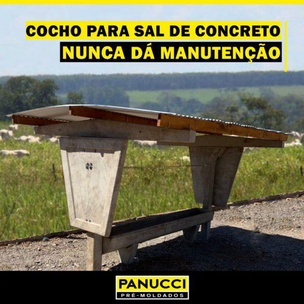Cocho para Sal de Concreto - Panucci
