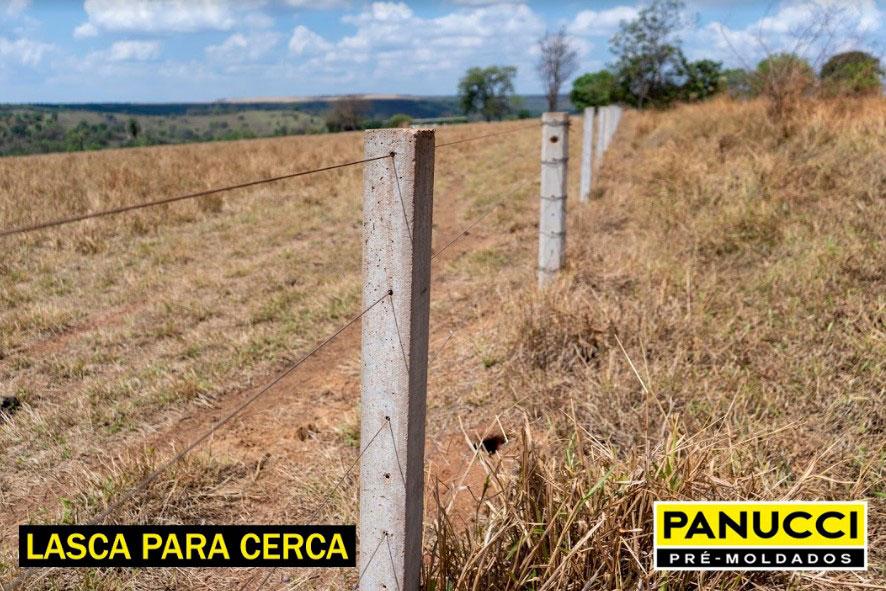 Lascas de Cerca - Panucci