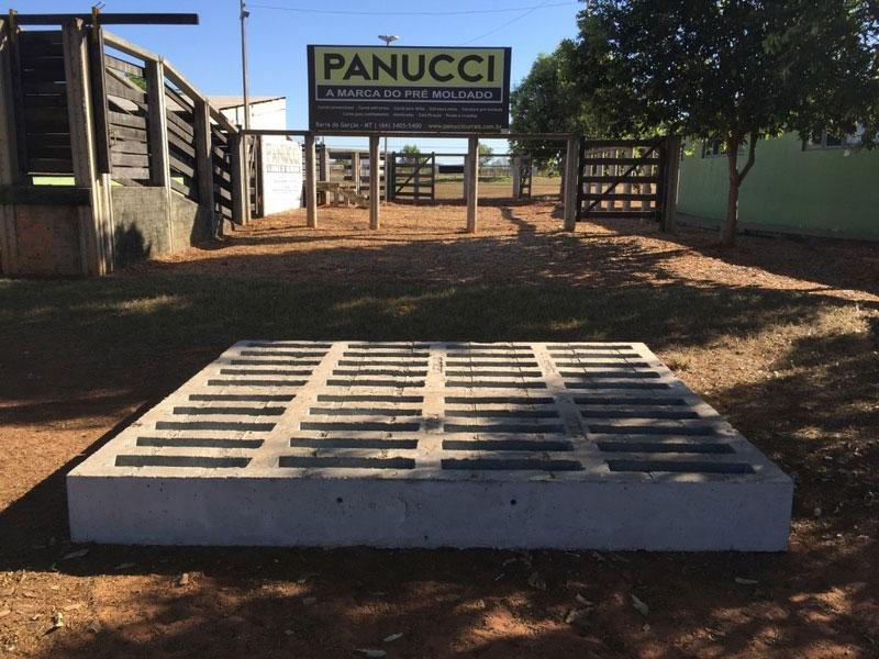 Mata burros inteligentes - Panucci