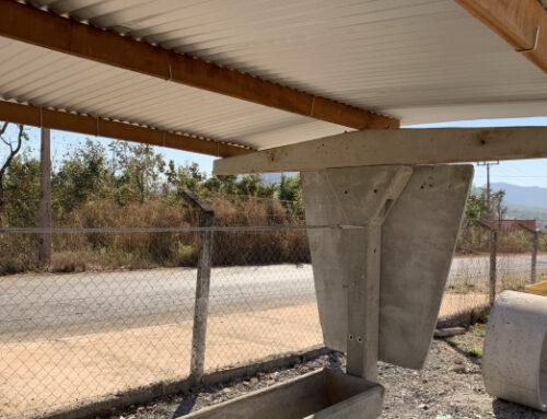 Vantagens do cocho para sal de concreto