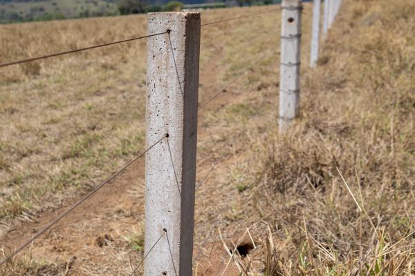 A Lasca De Concreto É Sim Uma Alternativa Para A Segurança Dos Bois